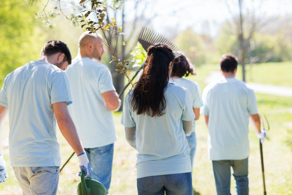 happy volunteers with seedlings and garden tools